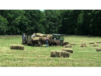 Hay fields: we made up to 1,935 sq. bales