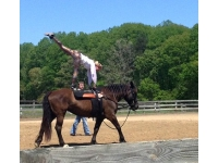Vaulting at FF by Cheryl Bell