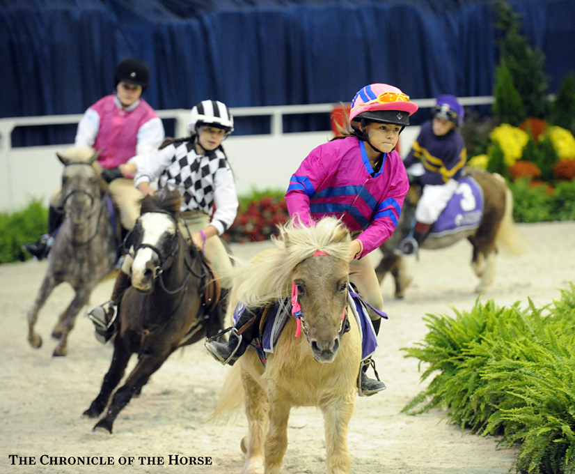 Pony races