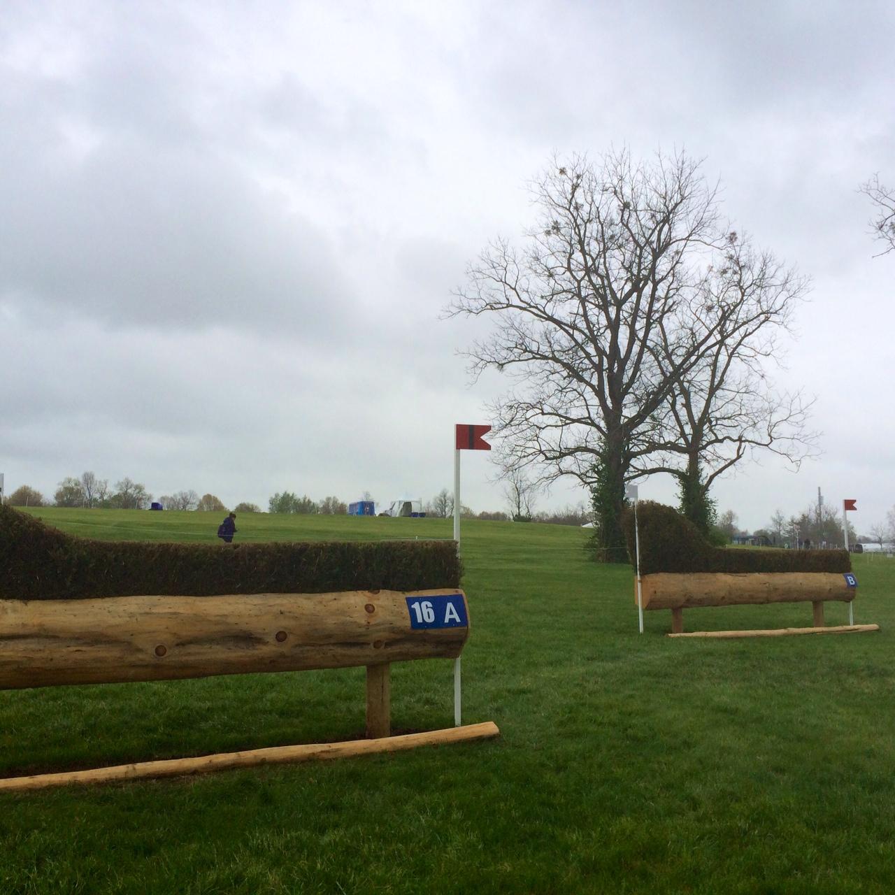 Angled Hedges