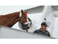 Justify BWI 1