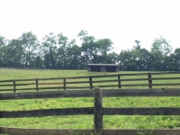 2200 Quebec School Rd pasture with shed