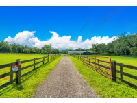 1003 Myrtle Rd Valrico-2 gated entry