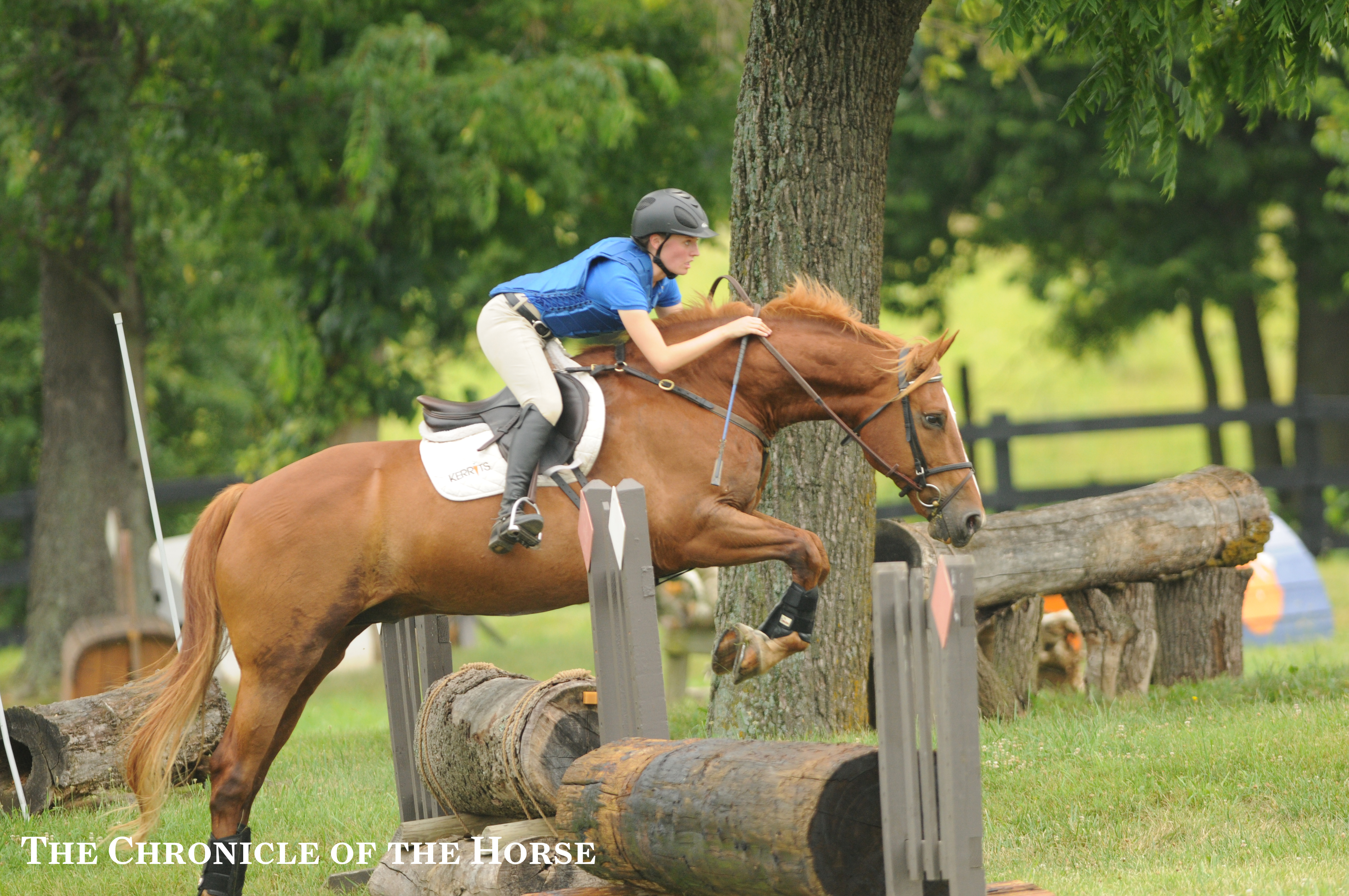 Horses jumping cross country - photo#47